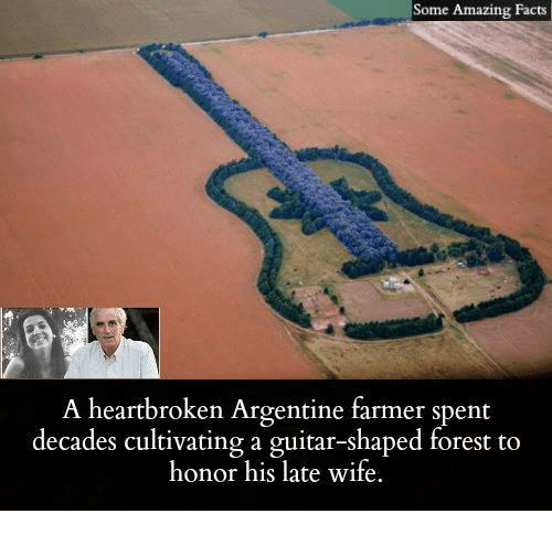 argentine: Some Amazing Facts  A heartbroken Argentine farmer spent  decades cultivating a guitar-shaped forest to  honor his late wife.