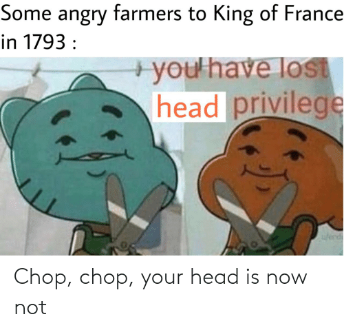 King Of: Some angry farmers to King of France  in 1793 :  +you'have lost  head privilege  w/erd Chop, chop, your head is now not