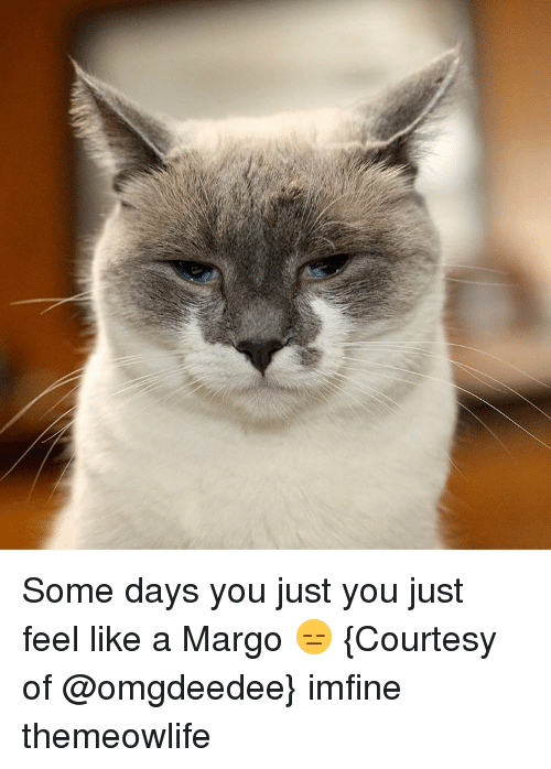 margo: Some days you just you just feel like a Margo 😑 {Courtesy of @omgdeedee} imfine themeowlife