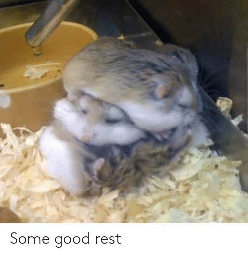 Some Good: Some good rest