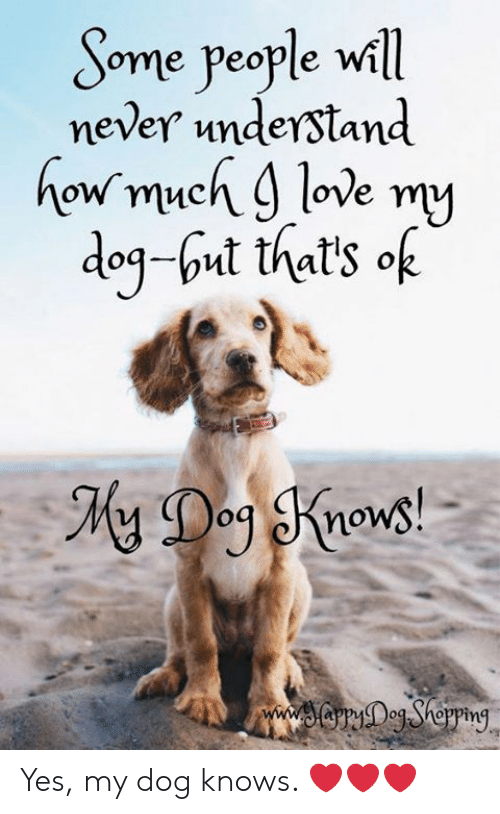 Love, Memes, and Never: Some people will  never understand  how much 9 love my  dog-ut that's of  www.soryegShepping Yes, my dog knows. ❤️❤️❤️