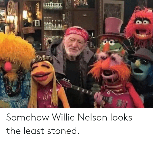 Willie Nelson, Nelson, and Stoned: Somehow Willie Nelson looks the least stoned.