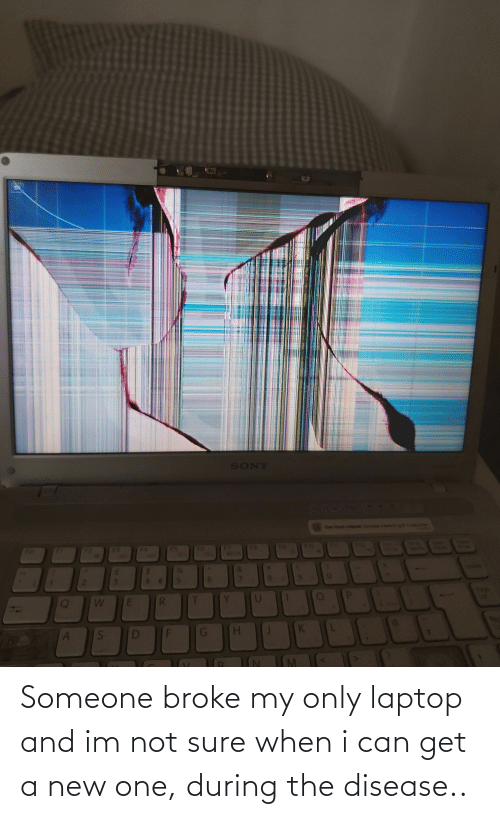 disease: Someone broke my only laptop and im not sure when i can get a new one, during the disease..