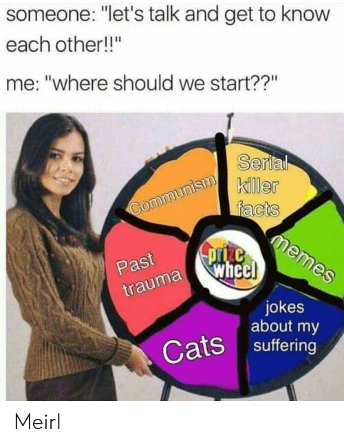 """Other Me: someone: """"let's talk and get to know  each other!!""""  me: """"where should we start??""""  Serl  killer  Past  uma whe  jokes  about my  Cats suffering Meirl"""