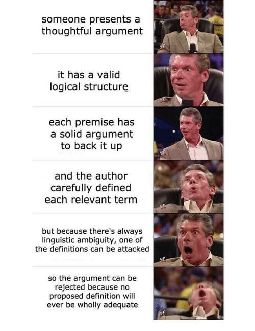 Definition, Dank Memes, and Ambiguity: someone presents a  thoughtful argument  it has a valid  logical structure  each premise has  a solid argument  to back it up  and the author  carefully defined  each relevant term  but because there's always  linguistic ambiguity, one of  the definitions can be attacked  so the argument can be  rejected because no  proposed definition will  ever be wholly adequate