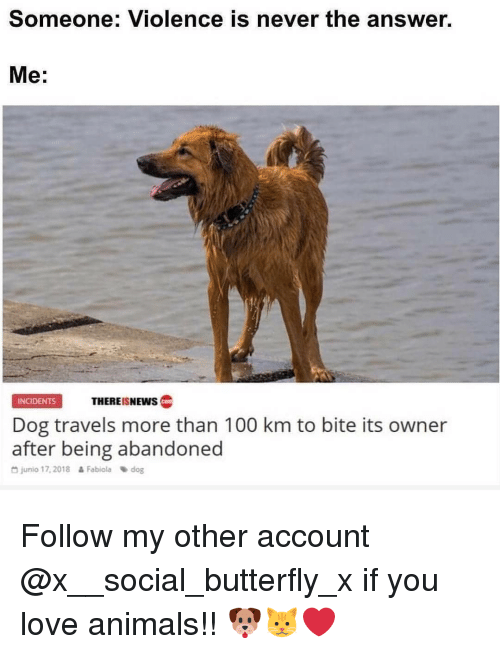 Love Animals: Someone: Violence is never the answer.  Me:  INCIDENTS  THERE!SNEWS C  Dog travels more than 100 km to bite its owner  after being abandoned  D junio 17,2018 Fabioladog Follow my other account @x__social_butterfly_x if you love animals!! 🐶🐱❤
