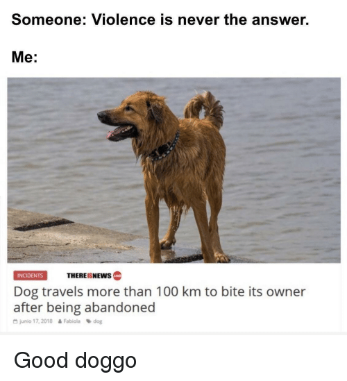 Anaconda, Good, and Never: Someone: Violence is never the answer.  Me:  THEREISNEws  INCIDENTS  cotm  Dog travels more than 100 km to bite its owner  after being abandoned  G junio 17, 2018  Fabiola dog Good doggo