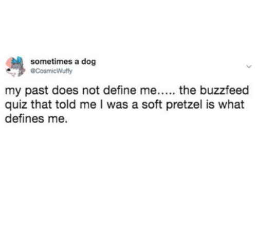 The Buzzfeed: sometimes a dog  CosmicWuffy  my past does not define me..... the buzzfeed  quiz that told me I was a soft pretzel is what  defines me.