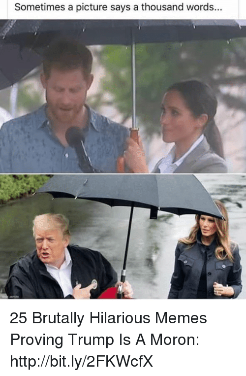 Memes, Http, and Trump: Sometimes a picture says a thousand words... 25 Brutally Hilarious Memes Proving Trump Is A Moron: http://bit.ly/2FKWcfX