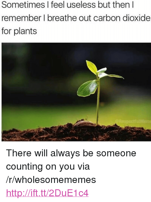 """Http, Carbon, and Via: Sometimes I feel useless but then l  remember l breathe out carbon dioxide  for plants <p>There will always be someone counting on you via /r/wholesomememes <a href=""""http://ift.tt/2DuE1c4"""">http://ift.tt/2DuE1c4</a></p>"""