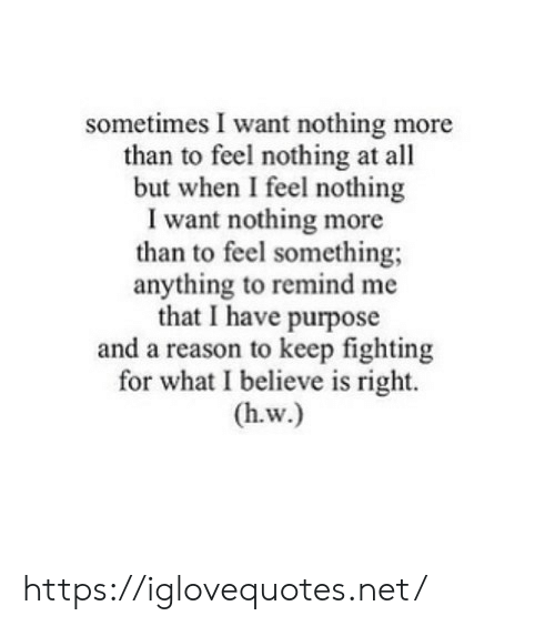 Reason, Net, and Fighting: sometimes I want nothing more  than to feel nothing at all  but when I feel nothing  I want nothing more  than to feel something;  anything to remind me  that I have purpose  and a reason to keep fighting  for what I believe is right.  (h.w.) https://iglovequotes.net/