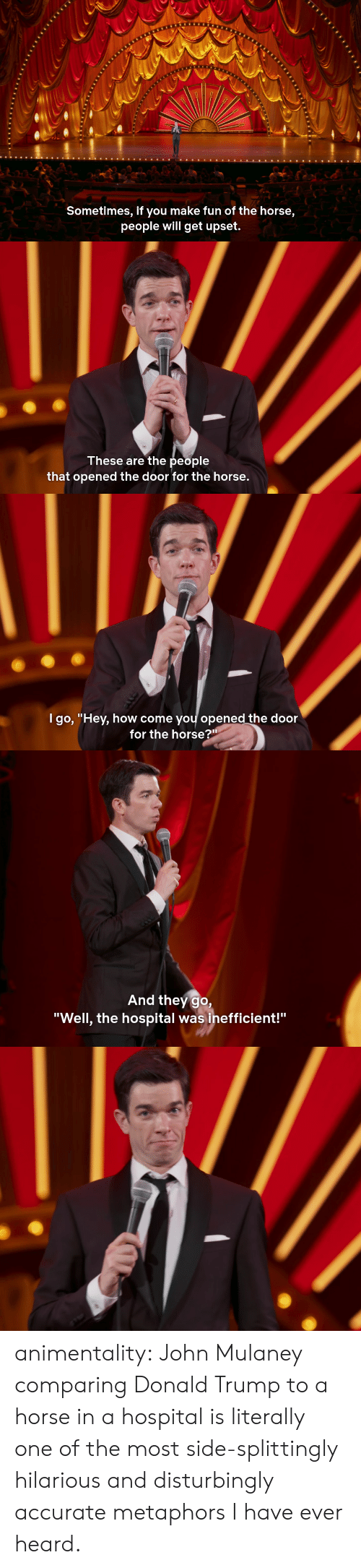 "Donald Trump, Tumblr, and Blog: Sometimes, if you make fun of the horse,  people will get upset.   These are the people  that opened the door for the horse.   l go, ""Hev, how come vou opened the door  for the horse?""   And they go,  ""Well, the hospital was inefficient!"" animentality:  John Mulaney comparing Donald Trump to a horse in a hospital is literally one of the most side-splittingly hilarious and disturbingly accurate metaphors I have ever heard."
