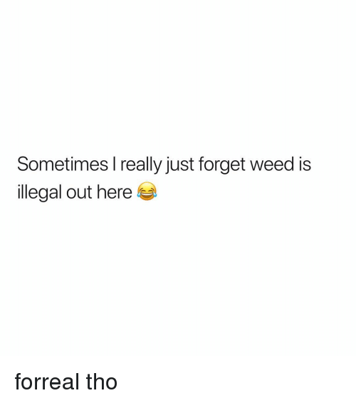 Weed, Marijuana, and Really: Sometimes l really just forget weed is  llegal out here forreal tho