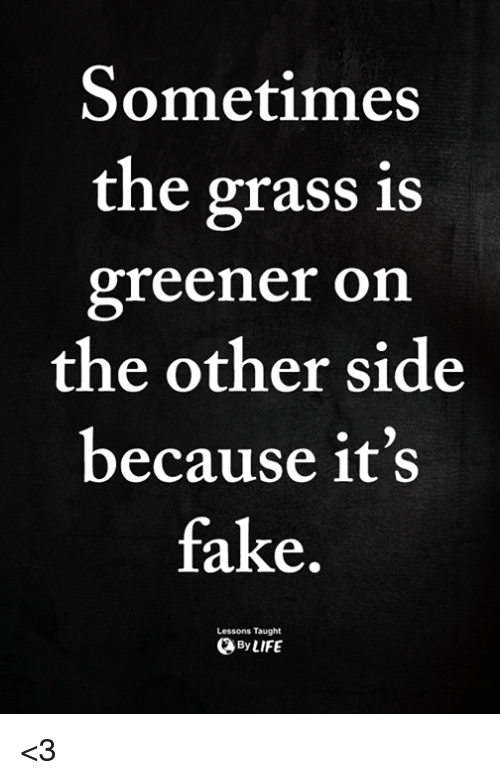 Fake, Memes, and 🤖: Sometimes  the grass is  greener on  the other side  because it's  fake  Lessons Taught  ByLIFE <3