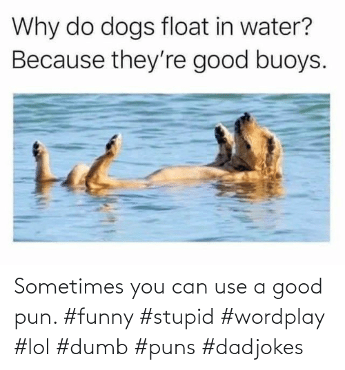 You Can: Sometimes you can use a good pun. #funny #stupid #wordplay #lol #dumb #puns #dadjokes