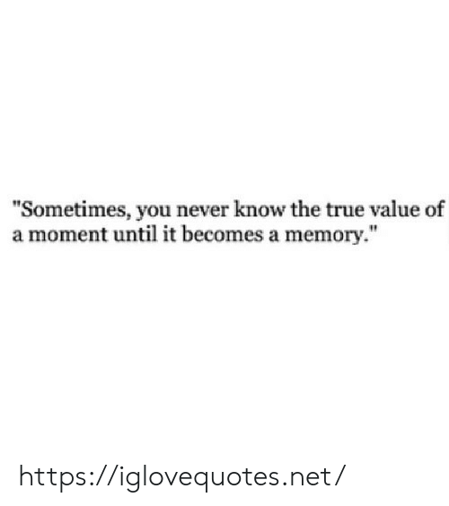 "True, True Value, and Never: ""Sometimes, you never know the true value of  a moment until it becomes a memory."" https://iglovequotes.net/"