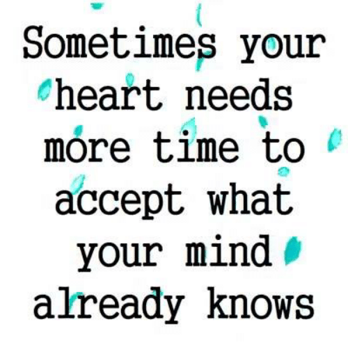 Memes, Heart, and Time: Sometimes your  heart needs  more time to  accept what  your mind »  already Knows