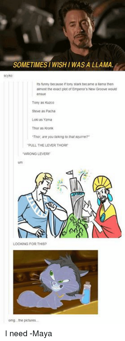 "Pacha: SOMETIMESI WISH I WAS A LLAMA  funny because irtony Stark became a lama then  almost the exact piot ofEmperors New Groove would  Tony as Kuzco  Steve as Pacha  Loki as Yzma  Thor as Kronk  Tinor, are you taking to that squirrel""  PULL THE LEVERTHORn  LOOK NG FOR THIS?  omg the pictures. I need   -Maya"