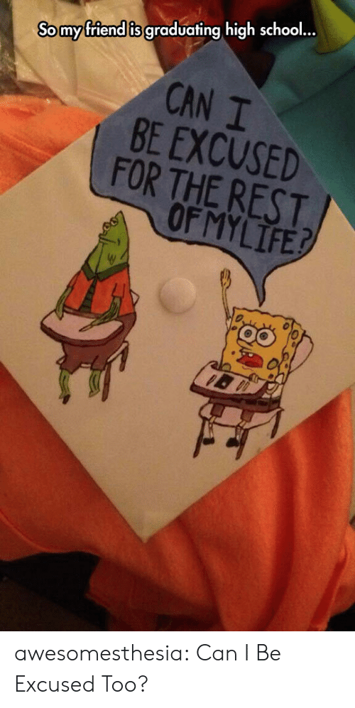 School, Tumblr, and Blog: Somy friend is graduating high school..  CAN I  BE EXCUSED  FOR THE REST  OF MYLIFE? awesomesthesia:  Can I Be Excused Too?