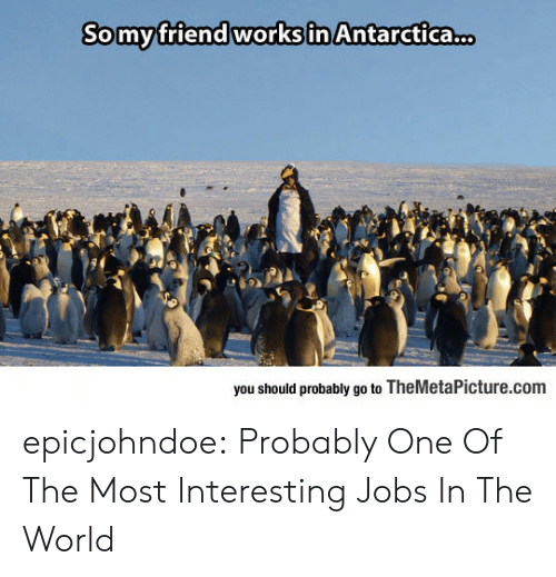 Antarctica: Somyfriend worksin Antarctica...  you should probably go to TheMetaPicture.com epicjohndoe:  Probably One Of The Most Interesting Jobs In The World