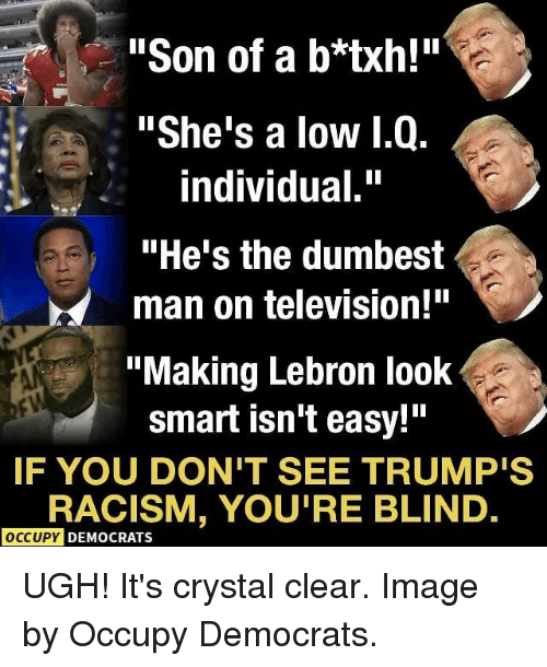 """Memes, Racism, and Image: """"Son of a b*txh!""""  """"She's a low 1.Q.  individual.""""  """"He's the dumbest  man on television!""""  """"Making Lebron look  smart isn't easy!""""  IF YOU DON'T SEE TRUMP'S  RACISM, YOU'RE BLIND  OCCUPY DEMOCRATS UGH! It's crystal clear. Image by Occupy Democrats."""