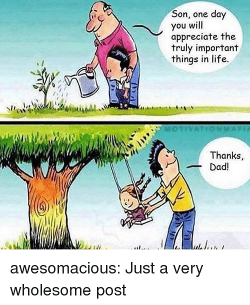 Life, Tumblr, and Appreciate: Son, one day  you will  appreciate the  truly important  things in life.  MOTIVATIONMAFİA  Thanks,  ad! awesomacious:  Just a very wholesome post