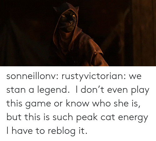 Energy, Stan, and Target: sonneillonv:  rustyvictorian: we stan a legend.  I don't even play this game or know who she is, but this is such peak cat energy I have to reblog it.