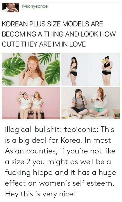 Asian, Cute, and Fucking: @sonyeonce  KOREAN PLUS SIZE MODELS ARE  BECOMING A THING AND LOOK HOW  CUTE THEY ARE IM IN LOVE illogical-bullshit:  tooiconic:  This is a big deal for Korea. In most Asian counties, if you're not like a size 2 you might as well be a fucking hippo and it has a huge effect on women's self esteem.   Hey this is very nice!
