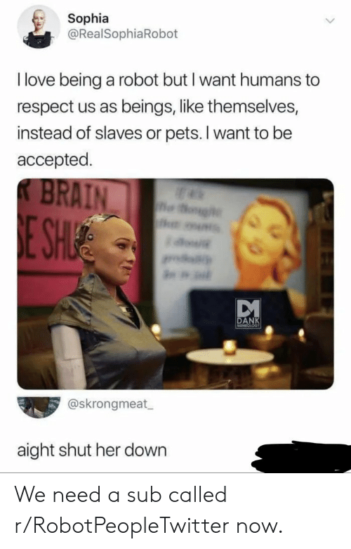 Dank, Love, and Respect: Sophia  @RealSophiaRobot  I love being a robot but I want humans to  respect us as beings, like themselves,  instead of slaves or pets. I want to be  accepted.  BRAIN  og  E SHIE  w  DANK  MEMECLOGT  @skrongmeat  aight shut her down We need a sub called r/RobotPeopleTwitter now.