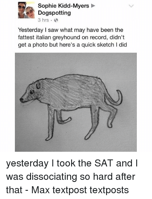 fattest: Sophie Kidd-Myers  Dogspotting  3 hrs.  Yesterday saw what may have been the  fattest italian greyhound on record, didn't  get a photo but here's a quick sketch I did yesterday I took the SAT and I was dissociating so hard after that - Max textpost textposts