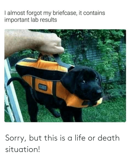Death: Sorry, but this is a life or death situation!