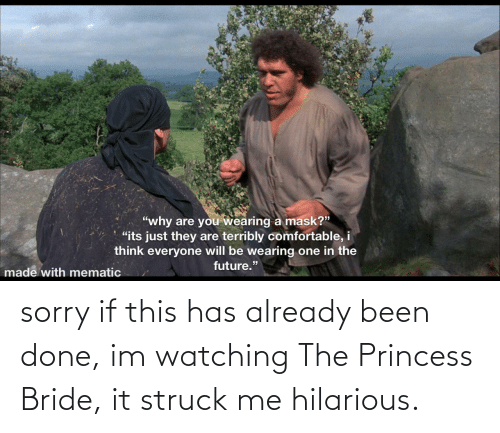 watching: sorry if this has already been done, im watching The Princess Bride, it struck me hilarious.