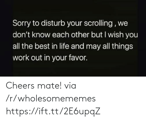 Life, Sorry, and Work: Sorry to disturb your scrolling , we  don't know each other but I wish you  all the best in life and may all things  work out in your favor. Cheers mate! via /r/wholesomememes https://ift.tt/2E6upqZ