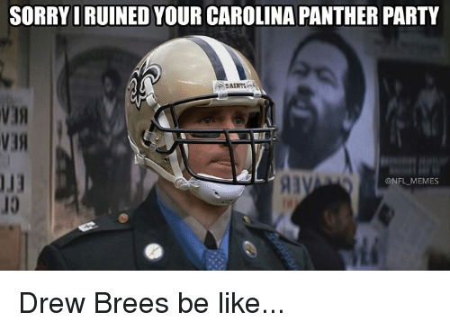 Be Like, Memes, and Nfl: SORRYIRUINED YOUR CAROLINA PANTHER PARTY  SAINT  113  10  Al  @NFL MEMES Drew Brees be like...
