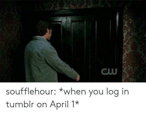 Tumblr On: soufflehour:  *when you log in tumblr on April 1*