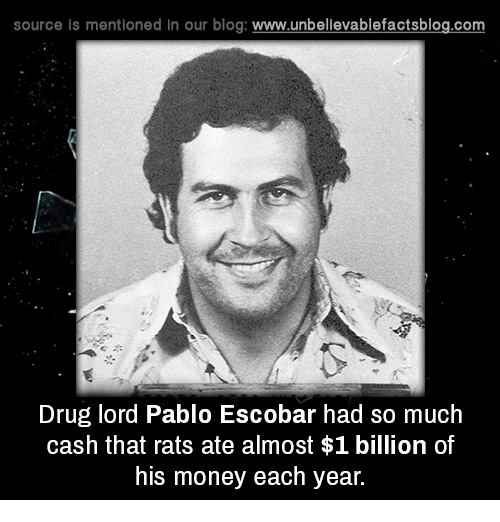 drug lords: source is mentioned in our blog  www.unbelievablefactsblog.com  Drug lord Pablo Escobar had so much  cash that rats ate almost $1 billion of  his money each year.