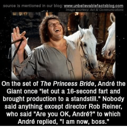 """André the Giant, Memes, and Blog: source is mentioned In our blog: www.unbellevablefactsblog.com  Image courtesy: Act แเ Communications  On the set of The Princess Bride, André the  Giant once """"let out a 16-second fart and  brought production to a standstill."""" Nobody  said anything except director Rob Reiner,  who said """"Are you OK, André?"""" to which  André replied, """"l am now, boss."""""""