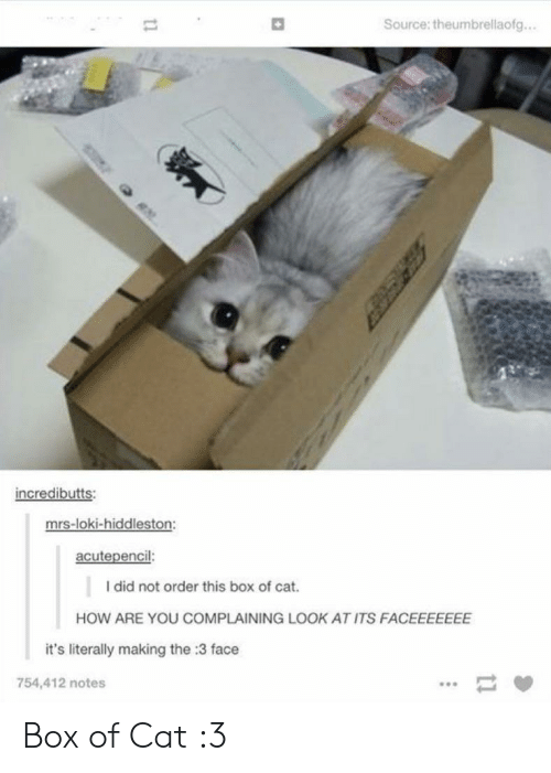 How, Cat, and Loki: Source: theumbrellaofg...  incredibutts:  mrs-loki-hiddleston:  acutepencil:  I did not order this box of cat  HOW ARE YOU COMPLAINING LOOK.  KAT ITS FACEEEEEEE  it's literally making the :3 face  754,412 notes  t1 Box of Cat :3