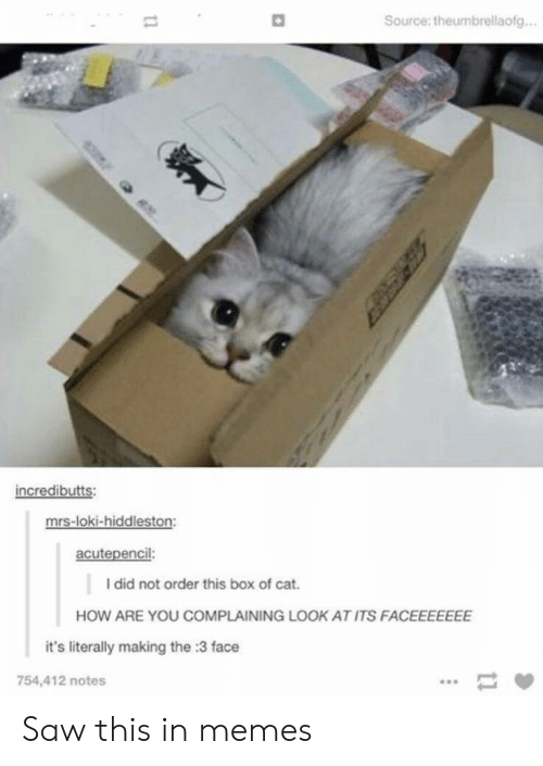 Memes, Saw, and How: Source: theumbrellaofg...  incredibutts:  mrs-loki-hiddleston:  acutepencil:  I did not order this box of cat.  HOW ARE YOU COMPLAINING LOOK AT ITS FACEEEEEEE  it's literally making the :3 face  754,412 notes  11  11 Saw this in memes