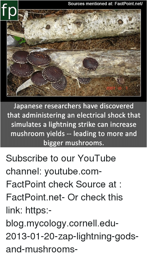 Memes, youtube.com, and Blog: Sources mentioned at: FactPoint.net/  fp  Japanese researchers have discovered  that administering an electrical shock that  simulates a lightning strike can increase  mushroom yields -- leading to more and  bigger mushrooms. Subscribe to our YouTube channel: youtube.com-FactPoint check Source at : FactPoint.net- Or check this link: https:-blog.mycology.cornell.edu-2013-01-20-zap-lightning-gods-and-mushrooms-