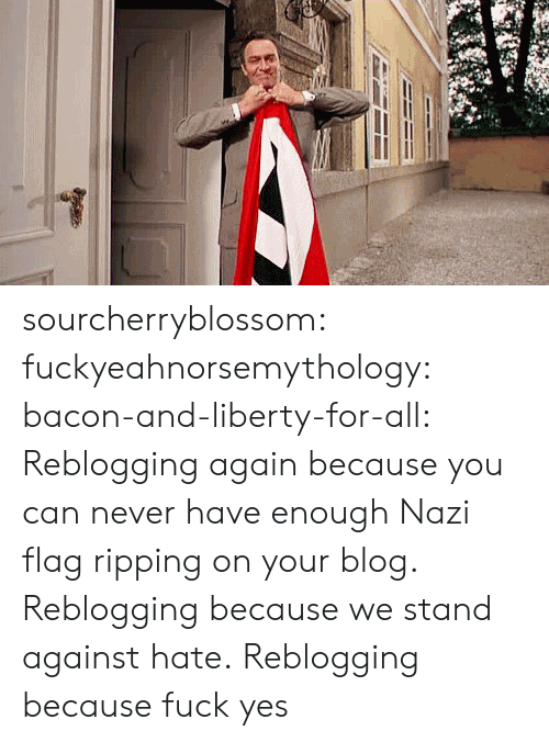 Fuck Yes: sourcherryblossom:  fuckyeahnorsemythology:  bacon-and-liberty-for-all:  Reblogging again because you can never have enough Nazi flag ripping on your blog.  Reblogging because we stand against hate.  Reblogging because fuck yes