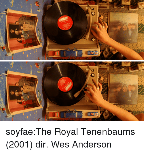 Tumblr, Blog, and Http: soyfae:The Royal Tenenbaums (2001) dir. Wes Anderson