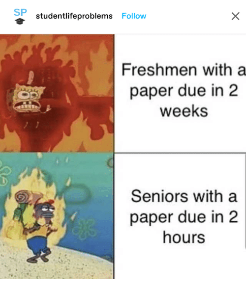 Paper, Seniors, and Freshmen: SP  studentlifeproblems Follow  Freshmen with a  paper due in 2  weeks  Seniors with a  paper due in 2  hours