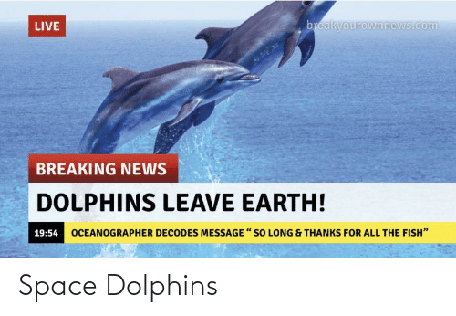 Space: Space Dolphins