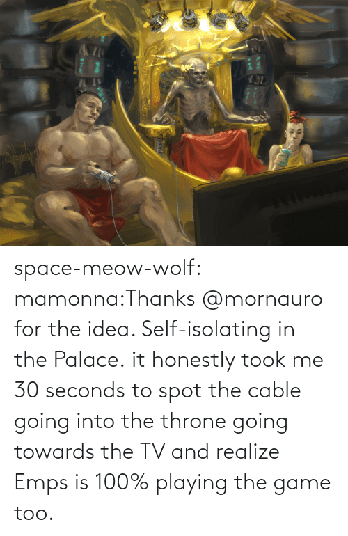 idea: space-meow-wolf:  mamonna:Thanks @mornauro for the idea. Self-isolating in the Palace. it honestly took me 30 seconds to spot the cable going into the throne going towards the TV and realize Emps is 100% playing the game too.