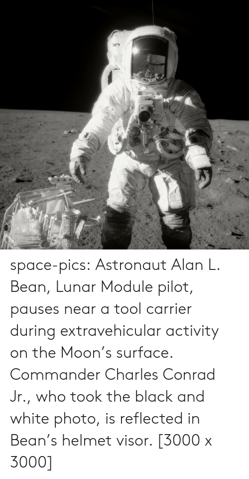 carrier: space-pics:  Astronaut Alan L. Bean, Lunar Module pilot, pauses near a tool carrier during extravehicular activity on the Moon's surface. Commander Charles Conrad Jr., who took the black and white photo, is reflected in Bean's helmet visor. [3000 x 3000]