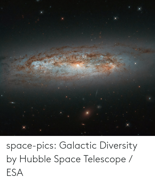 pics: space-pics:  Galactic Diversity by Hubble Space Telescope / ESA