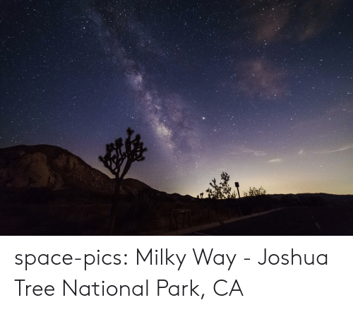 Milky Way: space-pics:  Milky Way - Joshua Tree National Park, CA