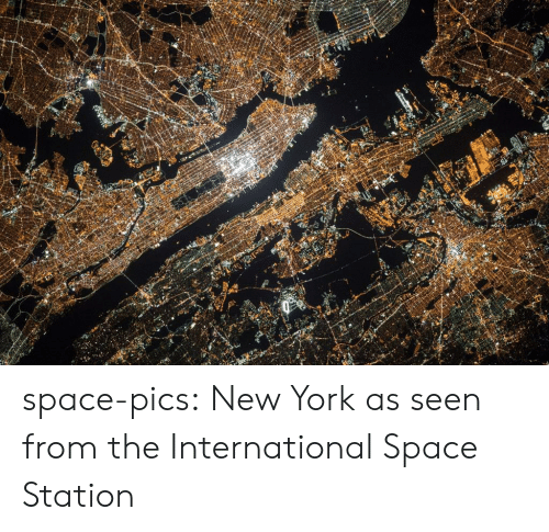 New York, Tumblr, and Blog: space-pics:  New York as seen from the International Space Station
