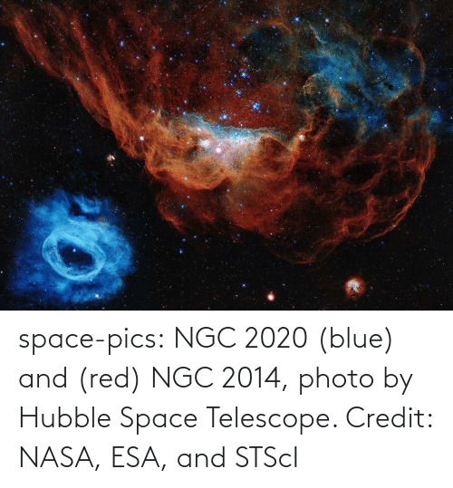 pics: space-pics:  NGC 2020 (blue) and (red) NGC 2014, photo by Hubble Space Telescope. Credit: NASA, ESA, and STScI